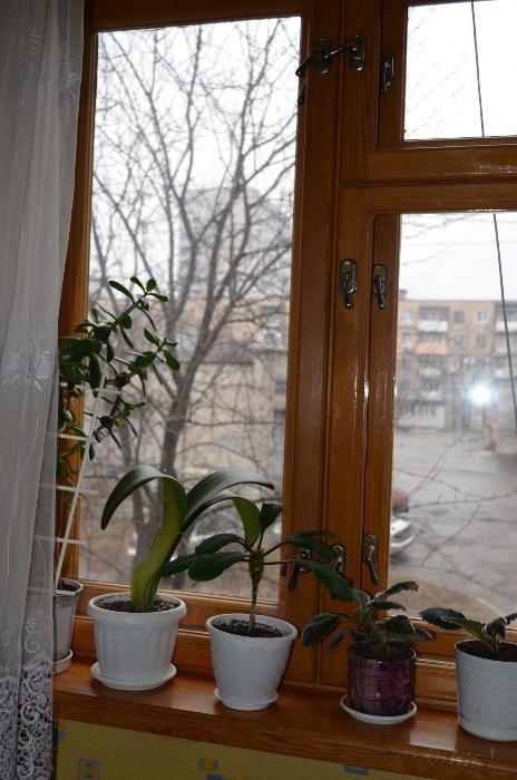 Фото - Продам квартиру Харьков, Танкопия ул.
