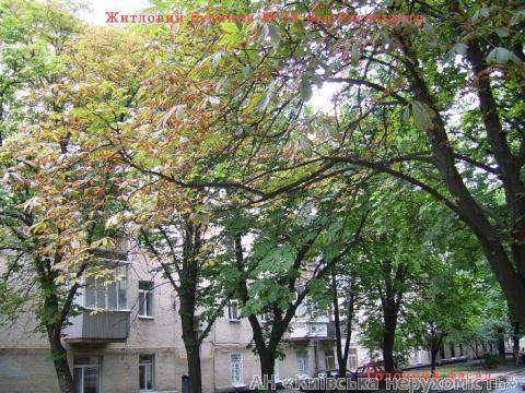 Фото 2 - Продам офис в многоквартирном доме Киев, Раевского Николая ул.
