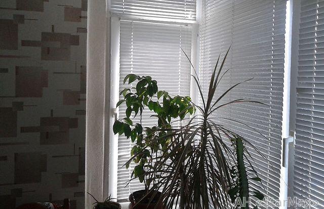 Продам квартиру Киев, Ялтинская ул. 4